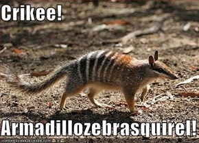 Crikee!  Armadillozebrasquirel!