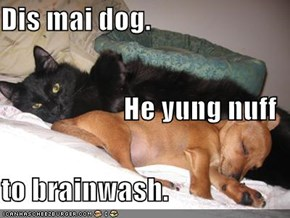 Dis mai dog. He yung nuff to brainwash.