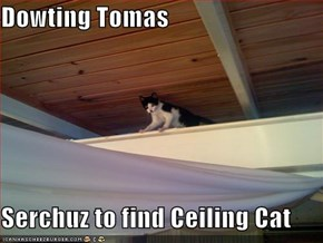 Dowting Tomas  Serchuz to find Ceiling Cat