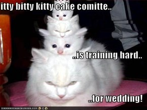 itty bitty kitty cake comitte.. ..is training hard.. ..for wedding!