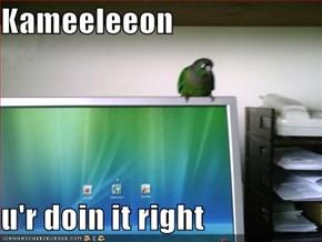 Kameeleeon  u'r doin it right