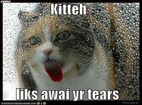 Kitteh  liks awai yr tears