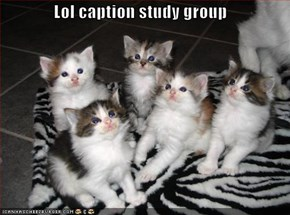 Lol caption study group