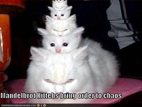 Mandelbrot Kittehs bring order to chaos