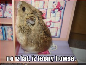 no iz fat, iz teeny howse.