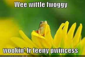 Wee wittle fwoggy   wookin' fr teeny pwincess