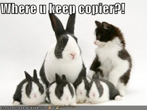 Where u keep copier?!