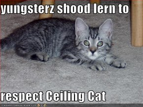 yungsterz shood lern to  respect Ceiling Cat
