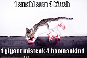 1 smahl step 4 kitteh    1 gigant misteak 4 hoomankind