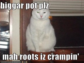 biggar pot plz  mah roots iz crampin'