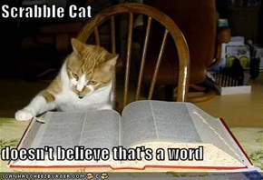 Scrabble Cat  doesn't believe that's a word