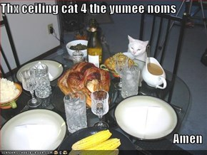 Thx ceiling cat 4 the yumee noms  Amen