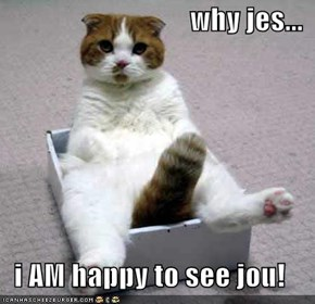 why jes...  i AM happy to see jou!