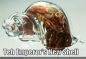 Teh Emperor's New Shell