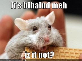 it's bihaind meh  iz it not?
