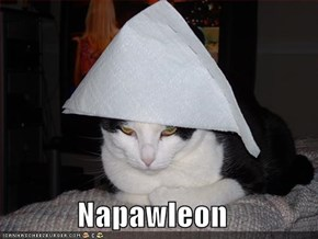 Napawleon