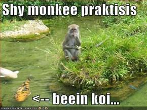 Shy monkee praktisis      <-- beein koi...