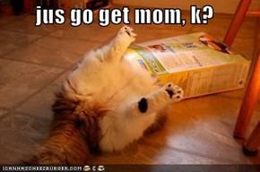 jus go get mom, k?