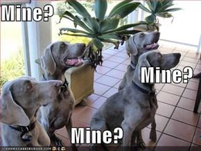 Mine?  Mine?                                Mine?