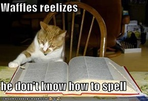 Waffles reelizes   he don't know how to spell