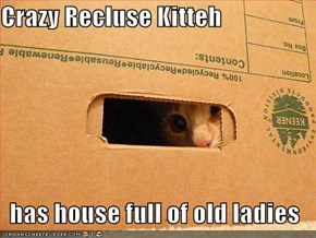 Crazy Recluse Kitteh  has house full of old ladies