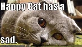 Happy Cat has a  sad.