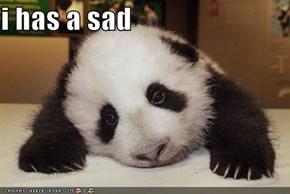 i has a sad