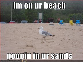 im on ur beach  poopin in ur sands