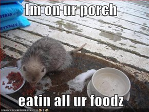 Im on ur porch  eatin all ur foodz
