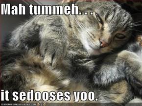 Mah tummeh. . .  it sedooses yoo.
