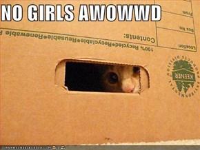 NO GIRLS AWOWWD