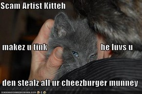 Scam Artist Kitteh  makez u tink                                he luvs u  den stealz all ur cheezburger munney