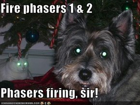 Fire phasers 1 & 2  Phasers firing, sir!