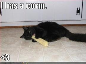 I has a corm.  <3