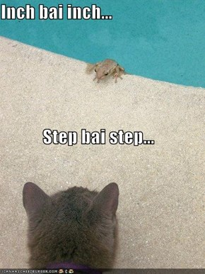 Inch bai inch... Step bai step...