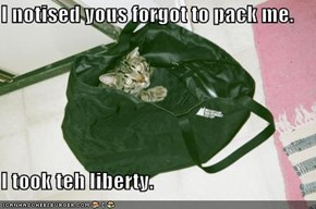 I notised yous forgot to pack me.  I took teh liberty.