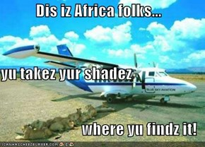 Dis iz Africa folks... yu takez yur shadez where yu findz it!