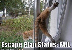Escape Plan Status: FAIL