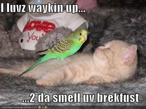 I luvz waykin up...  ...2 da smell uv brekfust
