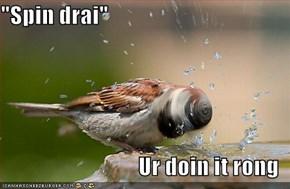 """Spin drai""  Ur doin it rong"