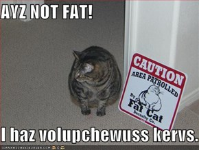 AYZ NOT FAT!  I haz volupchewuss kervs.