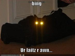 **bing**  Ur laitz r awn...