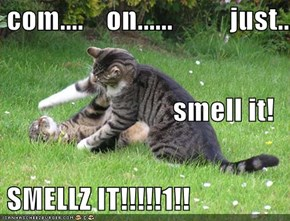com....    on......          just...                       smell it!  SMELLZ IT!!!!!1!!
