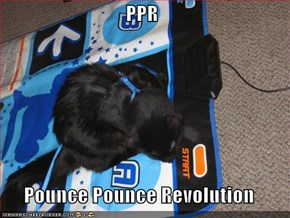 PPR  Pounce Pounce Revolution