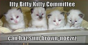 Itty Bitty Kitty Committee  can haz sum brown-noezrz