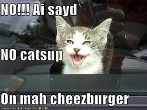 NO!!! Ai sayd  NO catsup On mah cheezburger