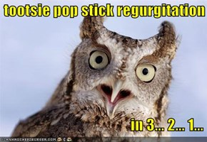 tootsie pop stick regurgitation                                             in 3... 2... 1...