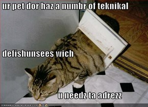 ur pet dor haz a numbr of teknikal  defishunsees wich                                  u needz ta adrezz