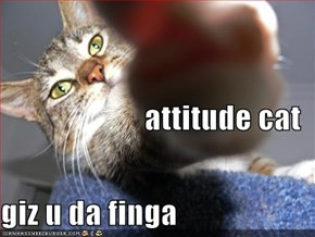 attitude cat giz u da finga