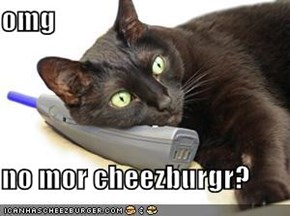 omg  no mor cheezburgr?
